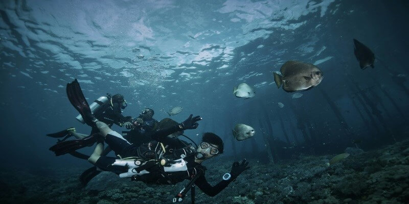 STARTUP STAGE: Deepblu aims to be the Airbnb of diving