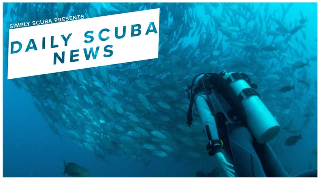 Daily Scuba News – Scuba Diving Airbnb Travel System Is On Its Way (Video)